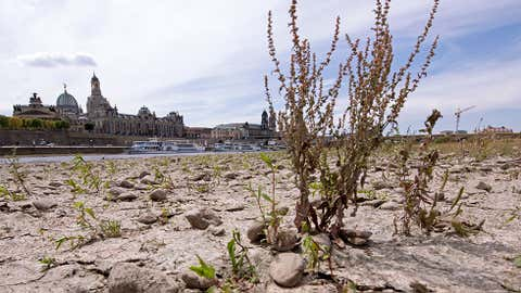 A large part of the Elbe river bed is dried out during a long time of drought in front of the skyline with the Frauenkirche cathedral (Church of Our Lady) in Dresden, Germany, Monday, July 9, 2018.The current water level of the Elbe near Dresden lies at 0,55 meters. (AP Photo/Jens Meyer)