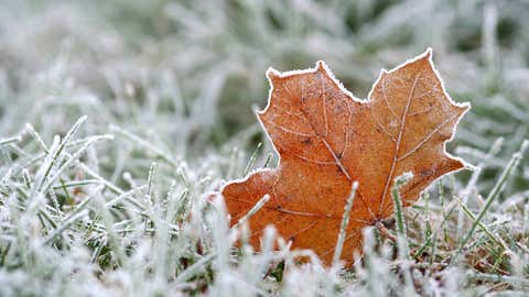 Frost (iStock/Provided by 1310 News)
