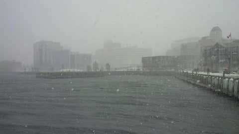 Snow falls over the Halifax harbour. (Meghan Groff/HalifaxToday.ca)