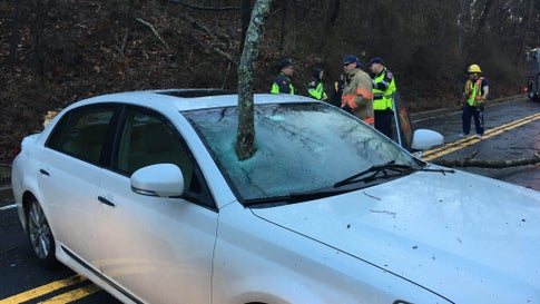 A tree branch smashed through this vehicles windshield during severe weather in Montgomery County, Md., Friday, Feb. 7, 2019. No injuries were reported. (Twitter/mcfrsPIO7)