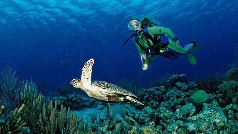 La isla Bonaire, en el Caribe, es un paraíso para los submarinistas, pero la crema solar que llevan puede acabar por destrozar los paisajes marinos que tanto aman. REINHARD DIRSCHER / ULLSTEIN BILD vía GETTY