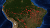 Amazon Rainforest Torched by Record Number of Wildfires