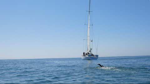 Le nageur en plein exercice, accompagné du voilier Discoverer qui l'escortera lors de la traversée. (@Ben Lecomte The Swim)