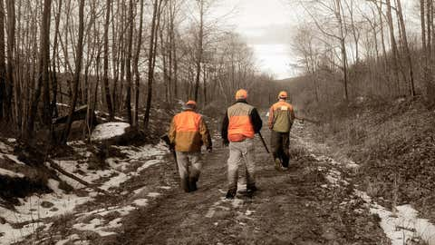 La démission de NicolasHulota relancé le débat sur la chasse. (illustration/CCO)