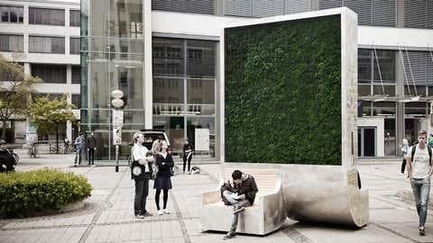 Mi-bancs mi-arbres, ce mobilier urbain absorbe 240 tonnes de CO2 par an. (Green City Solutions)