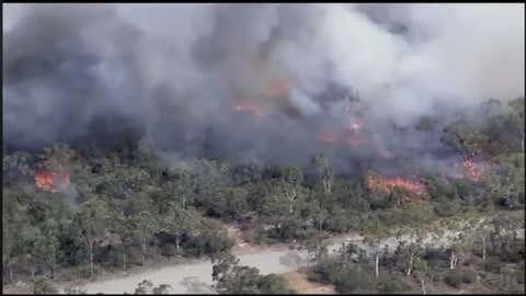 L'incendie qui a brûlé 2500 hectares serait d'origine criminelle. (Capture NSW Rural Fire Service Sutherland Shire)
