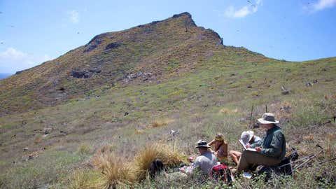 Les pique-niques font partie des avantages de la randonnée ! (CCO)