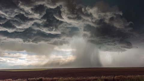 Extreme weather with this tornado-warned thunderstorm Supercell storm displaying a large downburst of monsoon like torrential rain, Colorado. USA