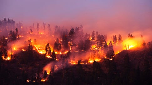 How to Prepare Your Family In Case of a Wildfire
