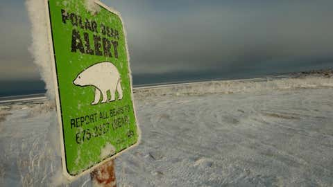 One of many polar bear alert warning signs posted inside the town of Churchill, Manitoba, Canada is frosted over, 17 November 2007, at the edge of the Hudson Bay. Polar bears return to Churchill with a human population of about 1,200 residents, but it is also the polar bear capital of the world. The bears return to hunt for seals on the icepack every year at this time and remain on the icepack feeding on seals until the spring thaw.   AFP Photo/Paul J. Richards (Photo credit should read PAUL J. RICHARDS/AFP via Getty Images)