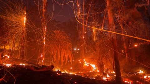 MONTECITO, CA - DECEMBER 16: A strong wind blows embers from smoldering trees at the Thomas Fire on December 16, 2017 in Montecito, California. The National Weather Service has issued red flag warnings of dangerous fire weather in Southern California for the duration of the weekend. Prior to the weekend, Los Angeles and Ventura counties had 12 consecutive days of red flag fire warnings, the longest sustained period of fire weather warnings on record. The Thomas Fire is currently the fourth largest California fire since records began in 1932, growing to 400 square miles and destroying more than 1,000 structures since it began on December 4. (Photo by David McNew/Getty Images)