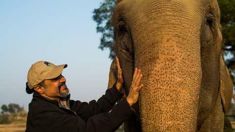 Kartick Satyanarayan, Co-Founder, Wildlife SOS