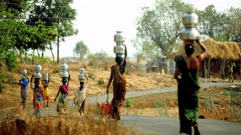 Summer Sowing Declines by 32% in Maharashtra as Water ...