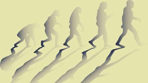 Human evolution (IANS)