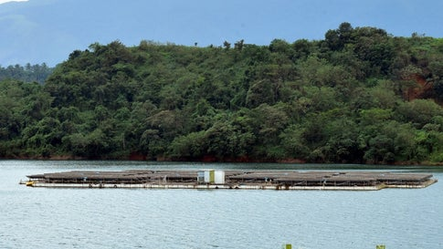 UP To Get First Floating Solar Park; Largest In The Country