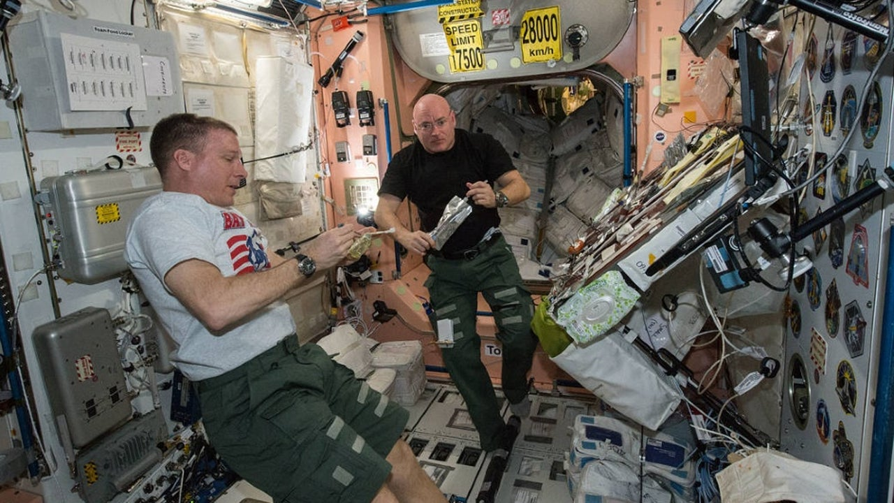 The Russian cosmonaut Oleg Skripochka has shown that it is possible to synthesise meat even in the harshest conditions of the space. In a first of its kind experiment, the astronaut made artificial meat in weightlessness at the International Space Station using the magnetic field in microgravity.