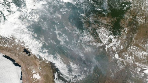 Lungs on Fire: Amazon Witnesses Record Rise in Forest Fires