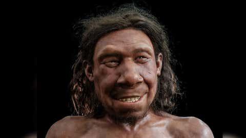 The reconstructed face of Neanderthal Krijn. (Servaas Neijens/Rijksmuseum van Oudheden)