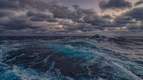 Representative Image. (Art Howard, Global Foundation for Ocean Exploration, NOAA)