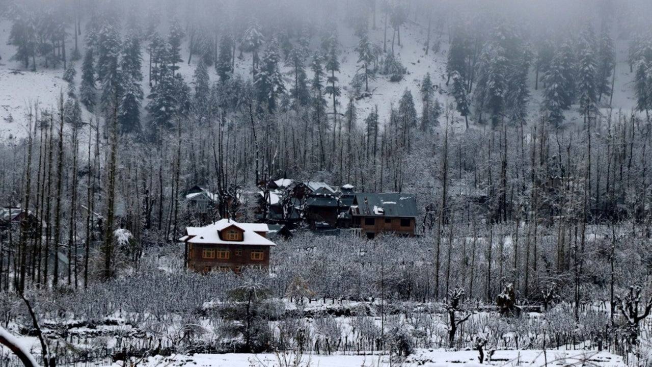As news of the snowfall spread, tourists started reaching Shimla and its nearby places like Kufri, Mashobra and Narkanda.