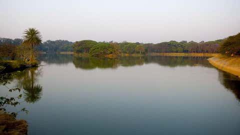 Representative Image of the water body. (IANS)