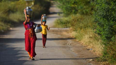 Representational image (Snehil Sakhare / BCCL, Aurangabad)
