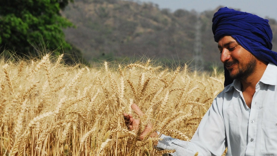 Rainfall a Relief for Rabi Crops in Northern States