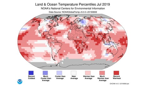 July 2019 Was Earth's Hottest Month on Record, NOAA Concludes