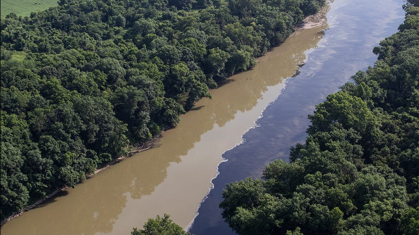 Jim Beam River Runoff Kills Thousands of Fish