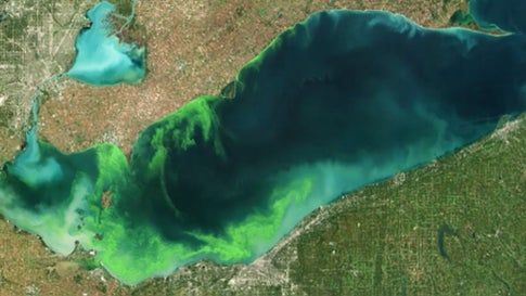 NOAA Predicts Lake Erie Will be Hit by Algae Bloom