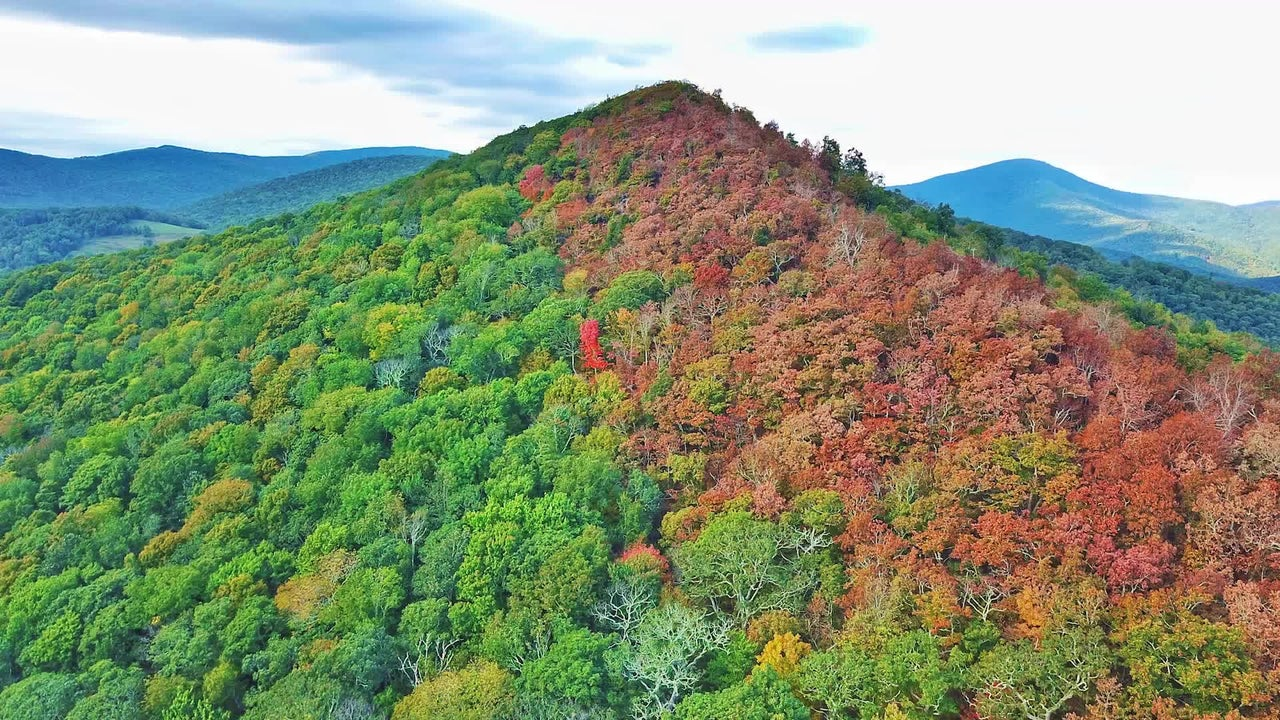Strip of Color as Leaves Turn on North Carolina Mountaintop