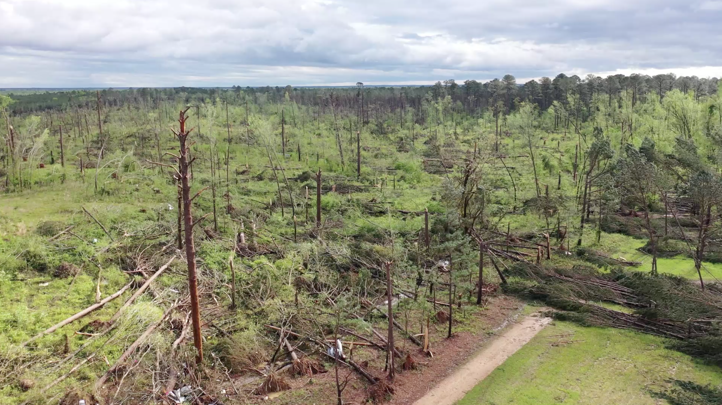 Tornado in Mississippi Leaves Well-Defined Path