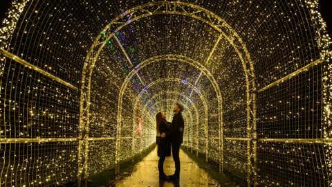 Londres, Reino Unido – Nos jaardins Kew Gardens, em Londres, há mais de 60 mil luzes acesas, que decoram o famoso espaço. (LEON NEAL/AFP/Getty Images)