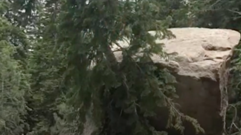 Earthquake Triggers Rockslide, Sends Campers Scrambling
