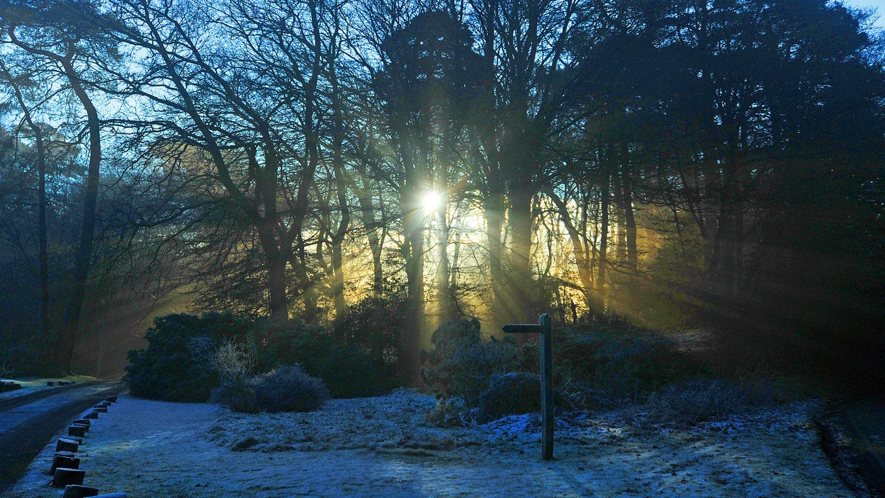Weekend of contrasts for many with snow in north but dry and bright - but chilly- elsewhere