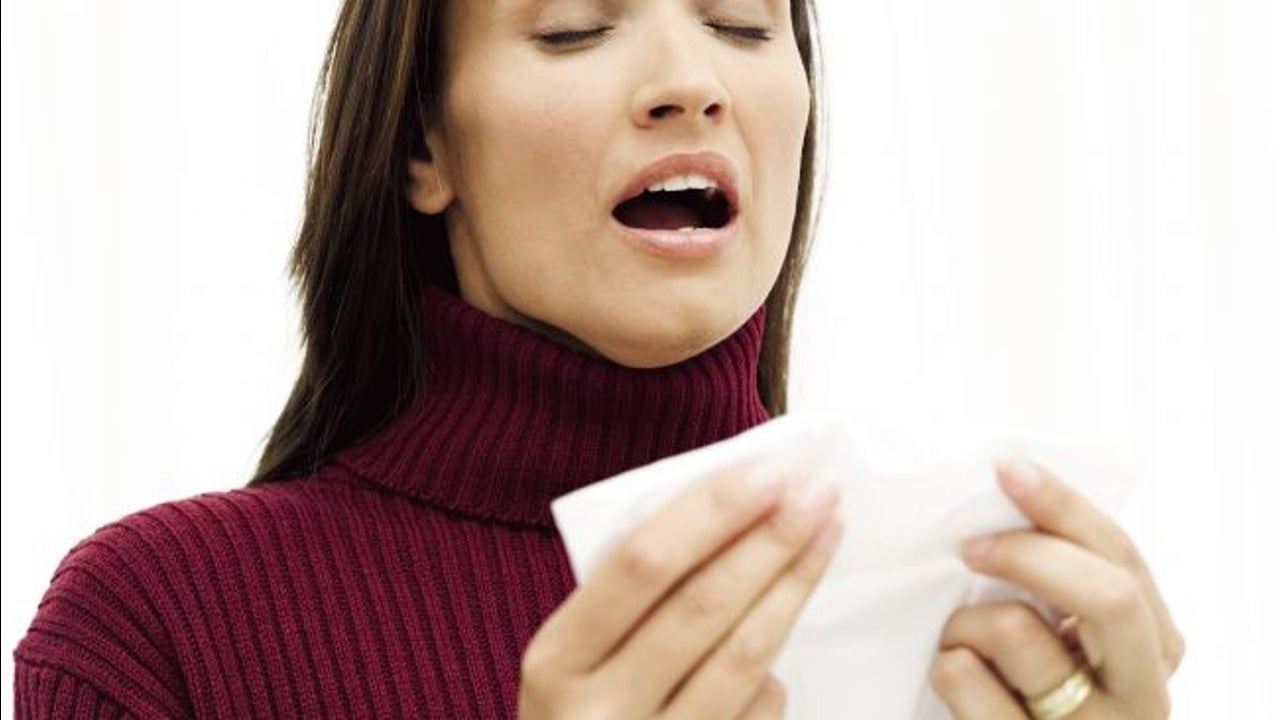 The Effect of Sneezes in Enclosed Spaces