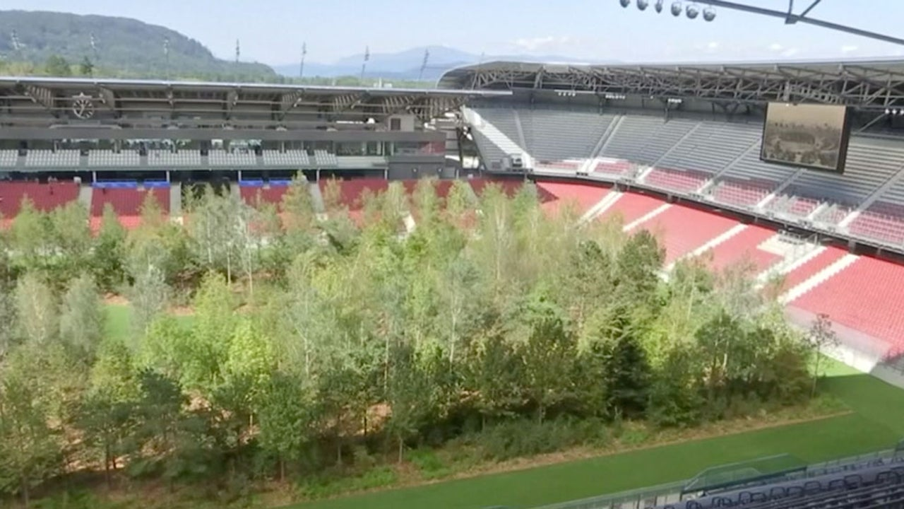 Austrian Stadium Transformed into Forest for Climate Change Awareness