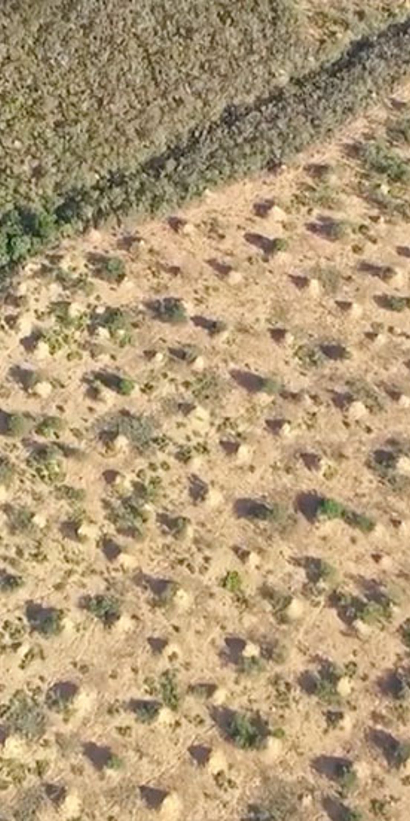 Thousand Year Old Termite Mounds Span An Area The Size Of Great Britain And Can Be Seen From Space The Weather Channel Articles From The Weather Channel Weather Com