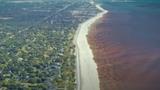 Mississippi Beaches Still Closed Due to Algae