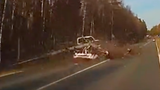Giant Tree Falls on Moving Cars in Western Russia
