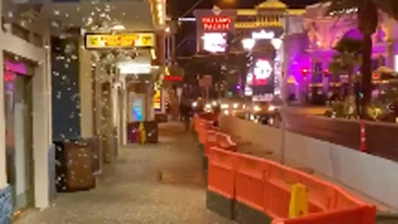 Las Vegas Christmas Weather.Massive Swarm Of Grasshoppers Invade Las Vegas The Weather