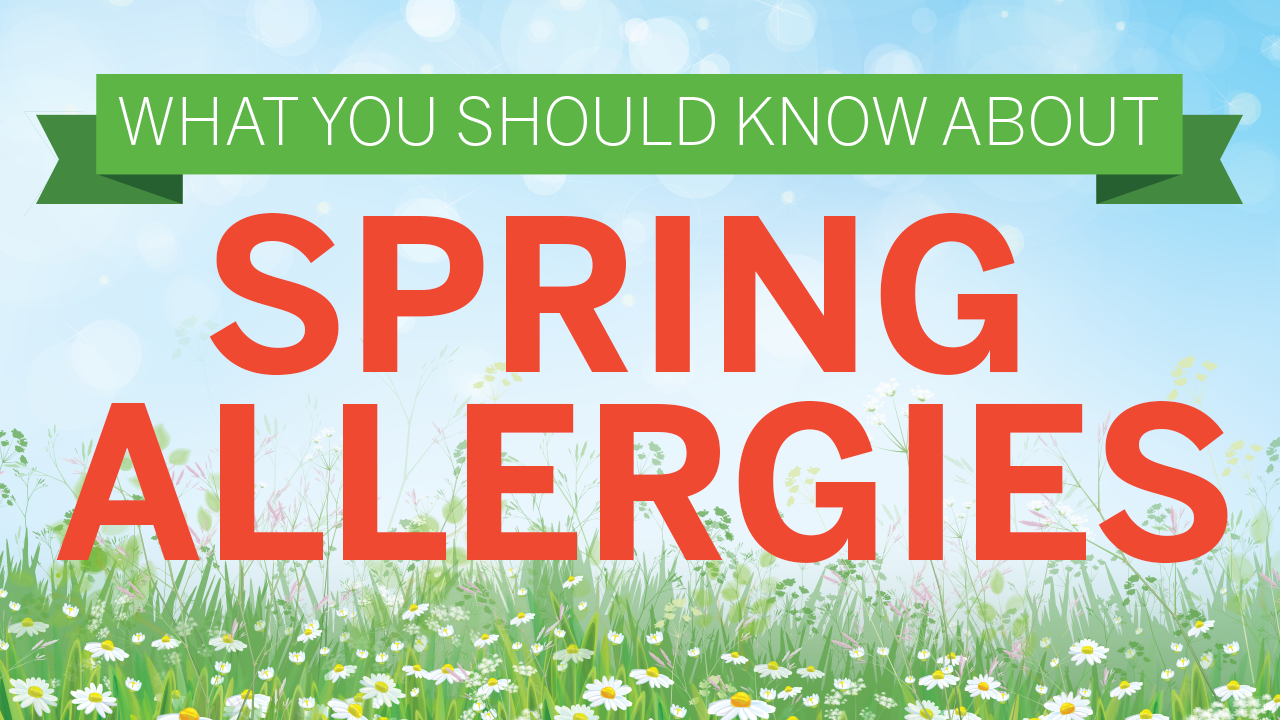 Learn All You Need To Know About Spring Allergies!