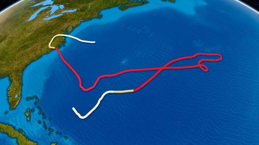 the weirdest hurricane and tropical storm tracks