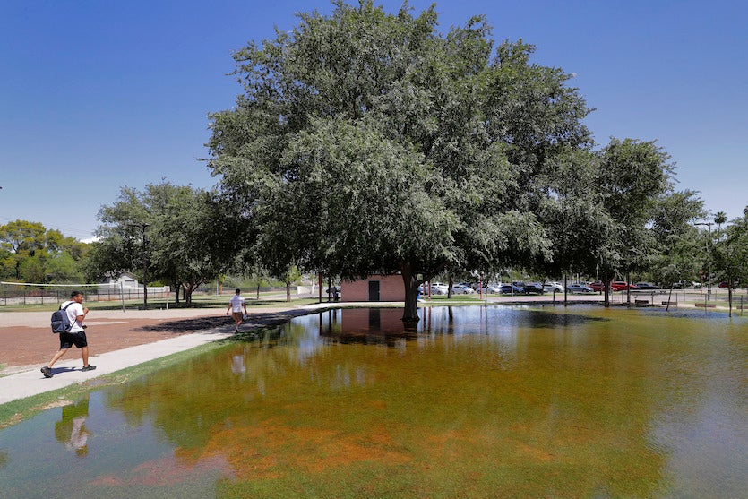 An irrigation-flooded park keeps a grassy area alive on August 27, 2019, in Tempe, Arizona
