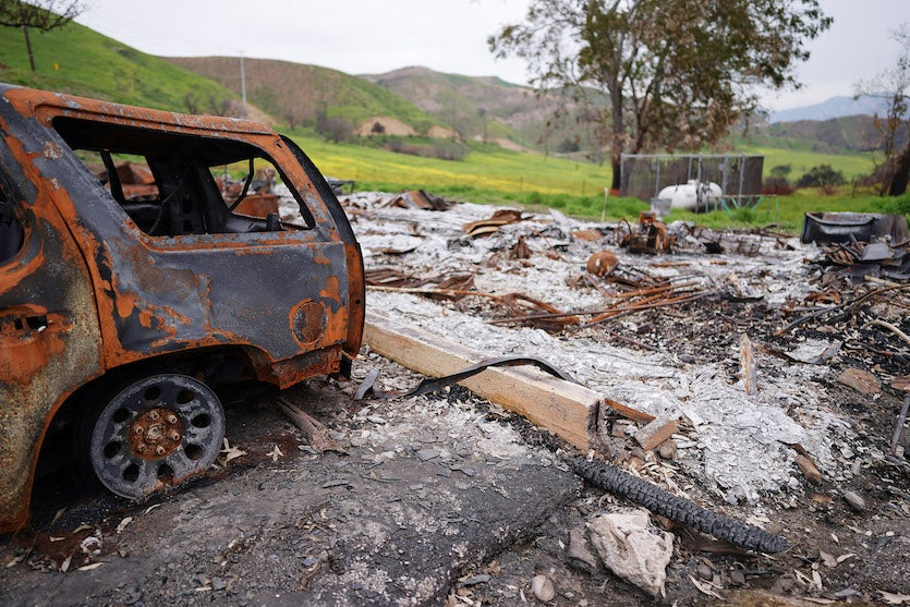 New vegetation sprouts behind a destroyed vehicle on February 27, 2019, at Malibu Creek State Park in California's Santa Monica Mountains, one of the areas affected by the Woolsey Fire of November 2018