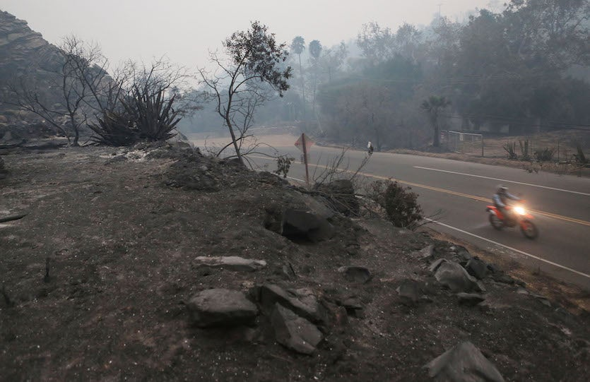 A man motorcycles through a landscape charred by the Thomas Fire on December 8, 2017 in Ojai, California.
