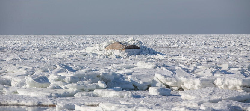 Sea ice covers Cape Cod Bay as viewed from Rock Harbor Beach, Cape Cod, in Orleans, MA, on Wed., Jan. 3, 2018