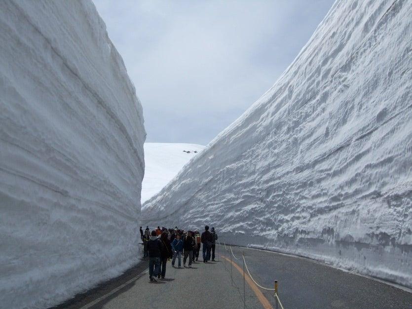 The famous Yuki-no-Otani snow canyon along the Tateyama Kurobe Alpine Route, Japan