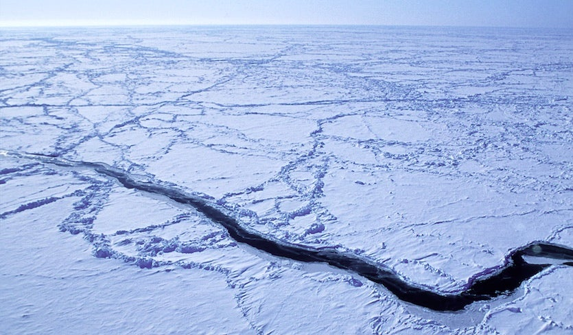 Models coming into agreement on widespread effects of arctic sea ice above an ice lead in the arctic ocean is captured from the nsfncar c 130 aircraft as it flies roughly 30 meters 100 feet above the ocean during a field platinumwayz