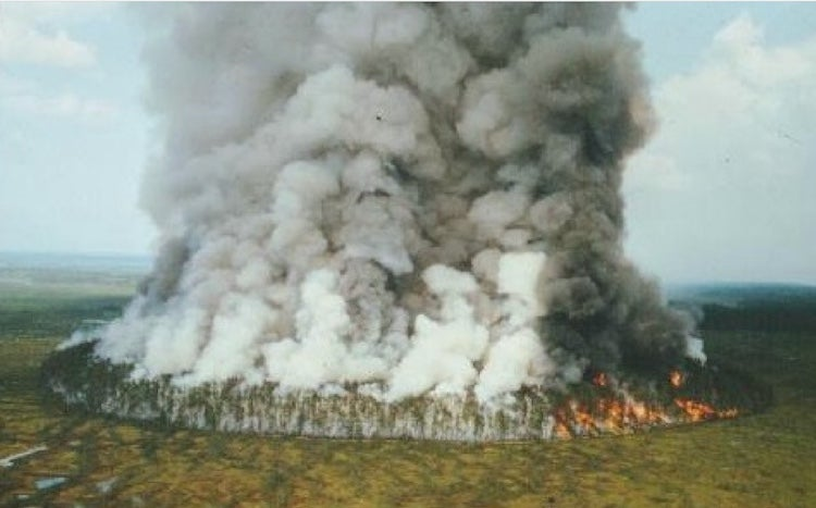 Dramatic smoke plume from an experimental fire at Bor Island, Siberia, 1993.